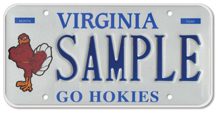 Virginia Tech - Hokie Bird Plate