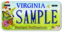 Protect Pollinators Plate