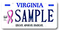 Breast Cancer Foundation-VA Plate