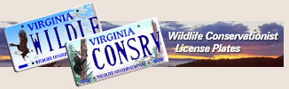 Wildlife conservationist license plates!