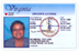 Drivers License for Over 21 