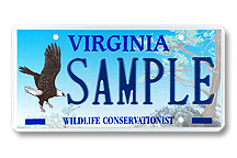 Wildlife Eagle Plate